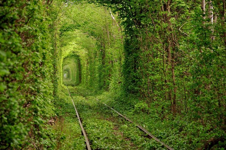 صور من نفق الحب tunnel-of-love-2[2